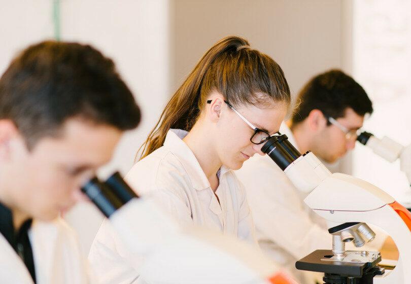 Etudiants des formations QSE de l'ESQESE regardant dans des microscopes